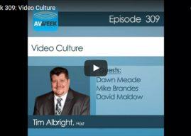 LDV's Guest Appearance on AVWeek 309: Video Culture